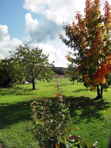 Rhönferienhaus Link - Garten