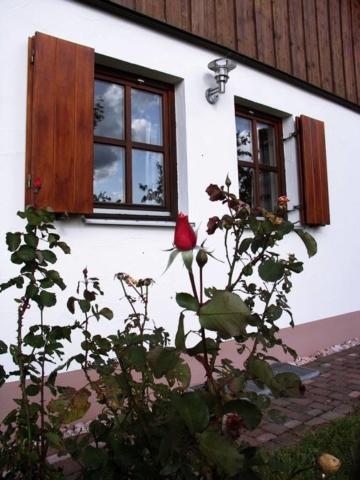 Rhönferienhaus Link - Rose